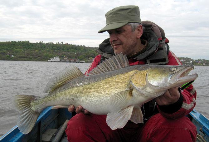 рыбалка март судак