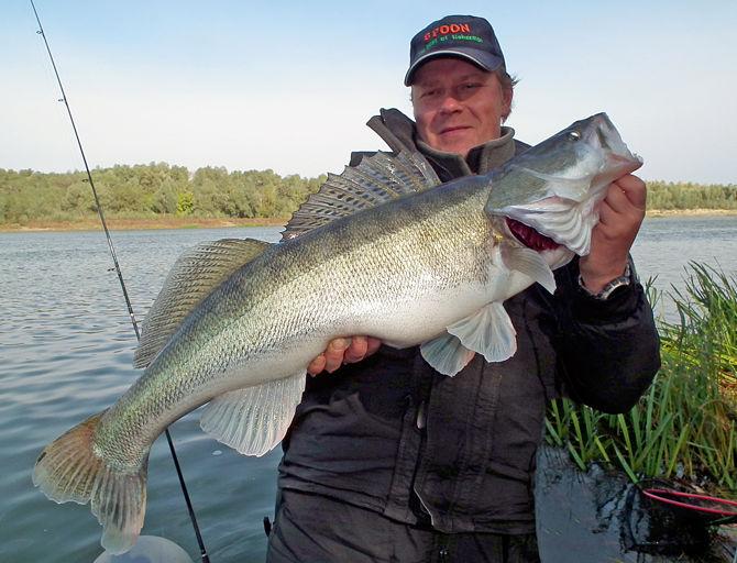 рыбалка на мышкову в волгоградской области